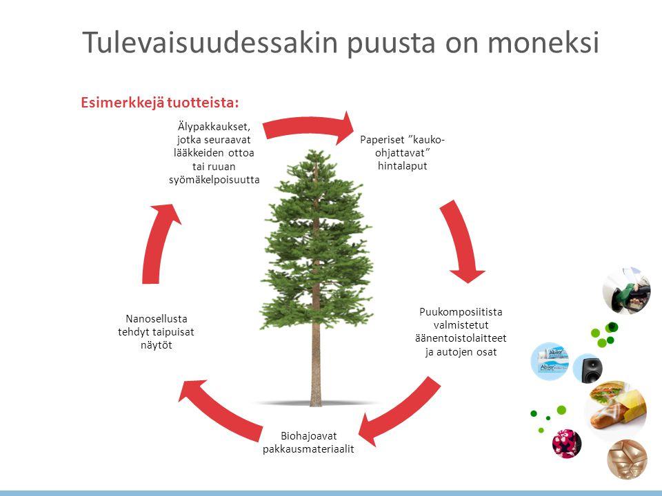 Tulevaisuudessakin puusta on moneksi