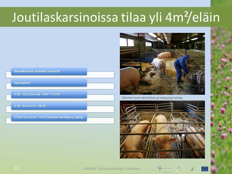 Joutilaskarsinoissa tilaa yli 4m²/eläin