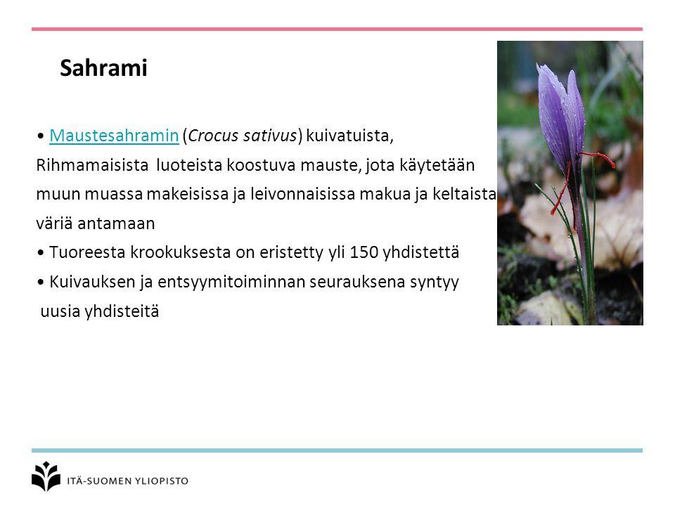 Sahrami Maustesahramin (Crocus sativus) kuivatuista,