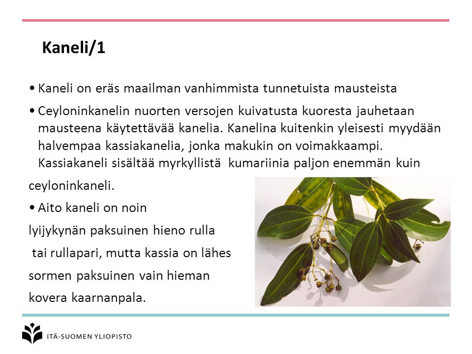 Kaneli/1 Kaneli on eräs maailman vanhimmista tunnetuista mausteista