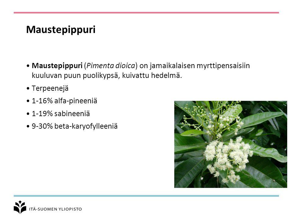 Maustepippuri Maustepippuri (Pimenta dioica) on jamaikalaisen myrttipensaisiin kuuluvan puun puolikypsä, kuivattu hedelmä.