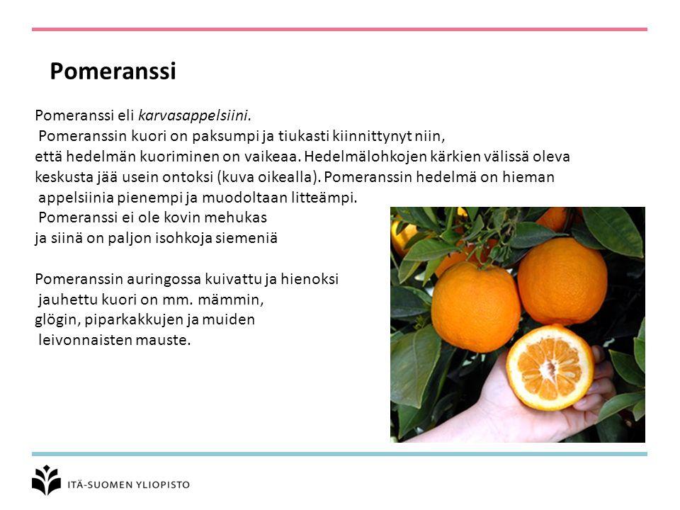 Pomeranssi Pomeranssi eli karvasappelsiini.