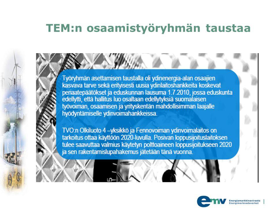 TEM:n osaamistyöryhmän taustaa