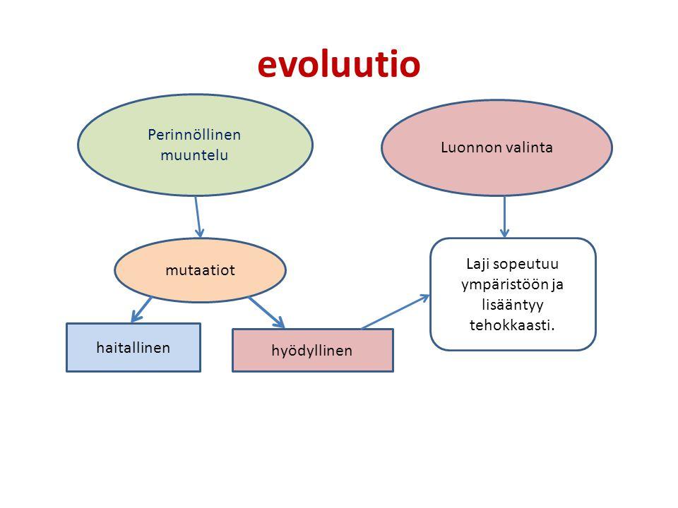 evoluutio Perinnöllinen muuntelu Luonnon valinta