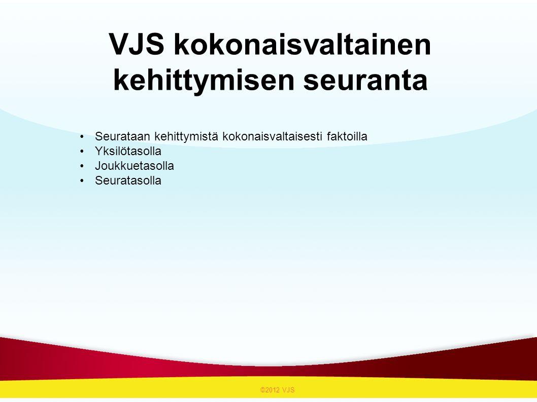 VJS kokonaisvaltainen kehittymisen seuranta