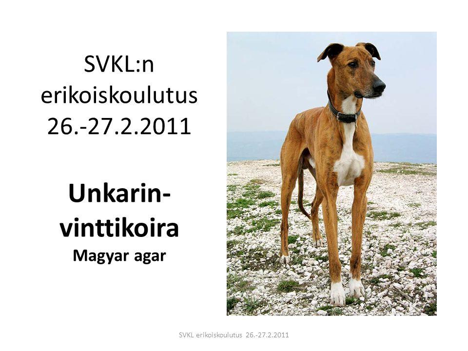 SVKL:n erikoiskoulutus 26.-27.2.2011 Unkarin-vinttikoira Magyar agar