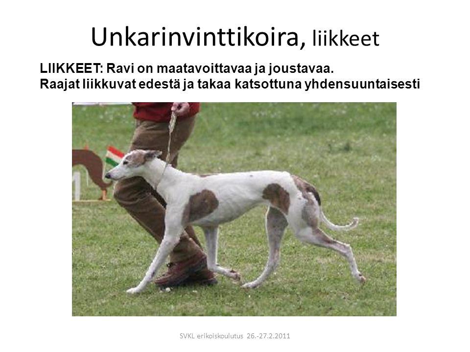 Unkarinvinttikoira, liikkeet