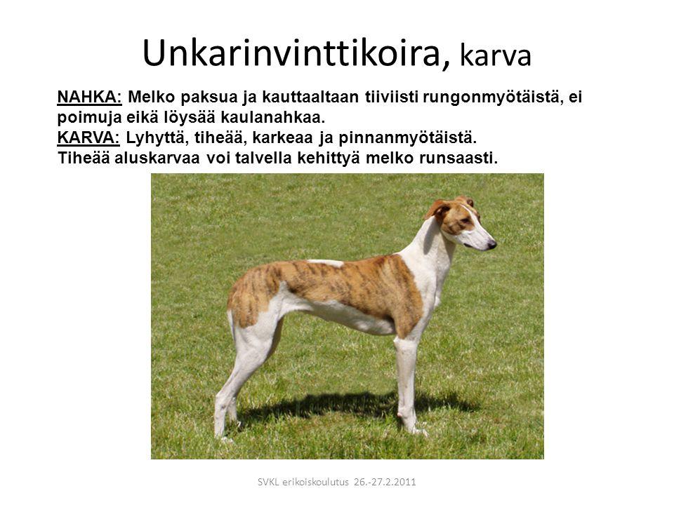 Unkarinvinttikoira, karva