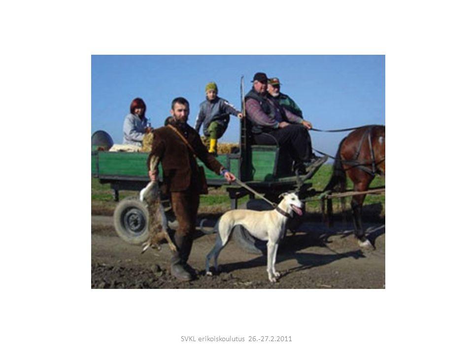 SVKL erikoiskoulutus 26.-27.2.2011