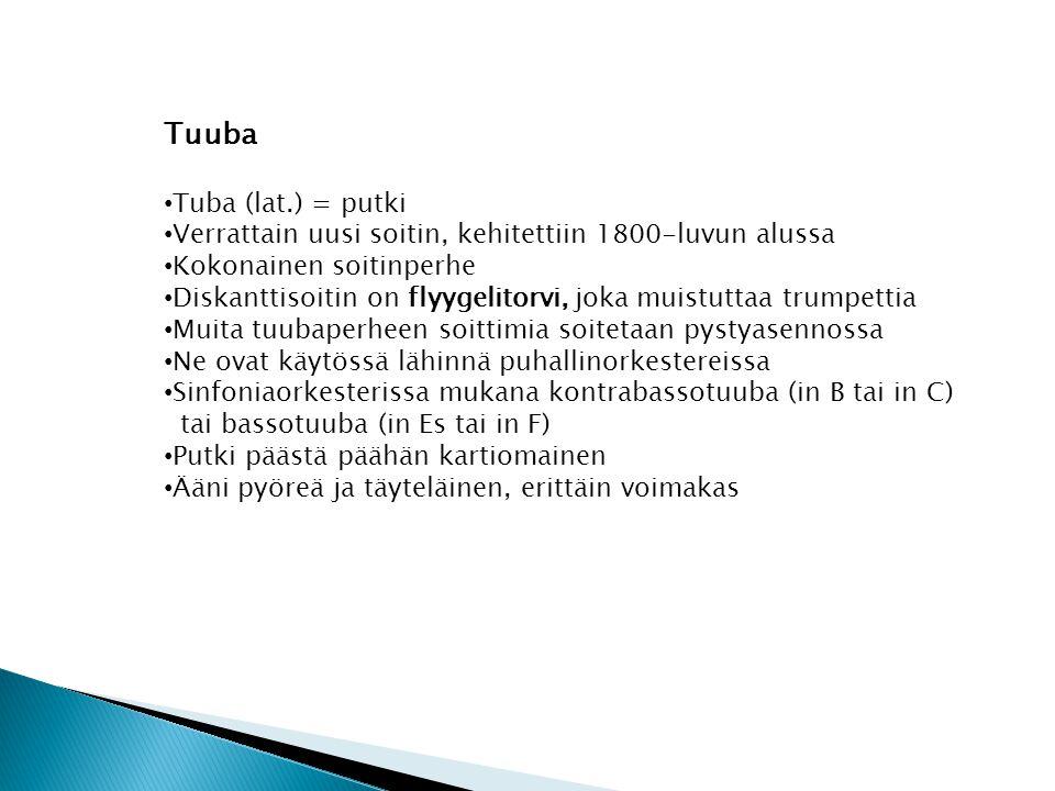 Tuuba Tuba (lat.) = putki