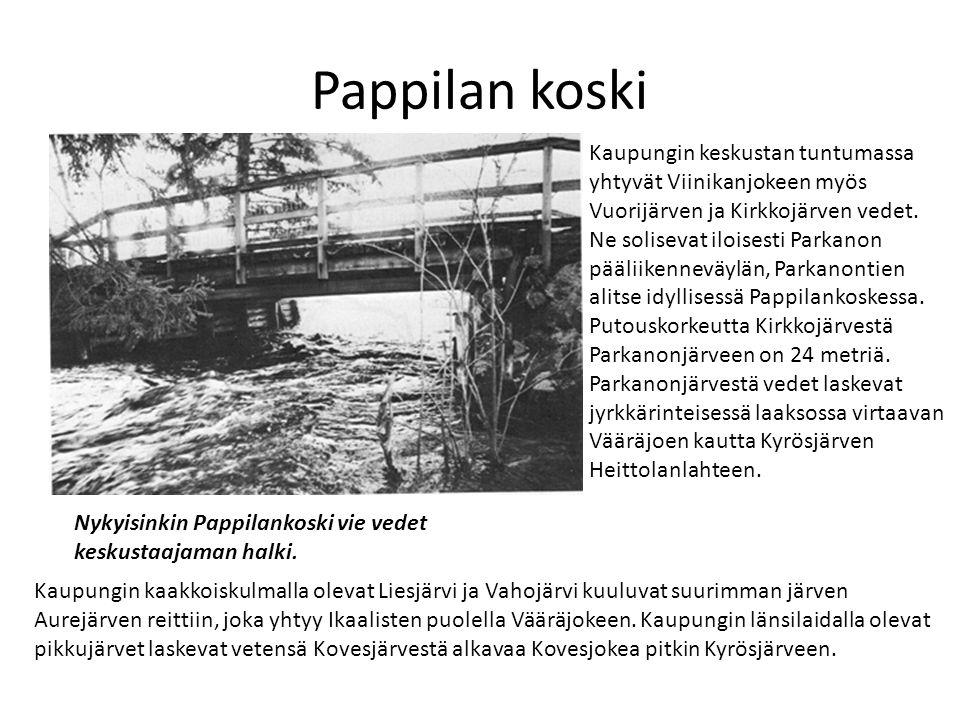 Pappilan koski Kaupungin keskustan tuntumassa yhtyvät Viinikanjokeen myös. Vuorijärven ja Kirkkojärven vedet.