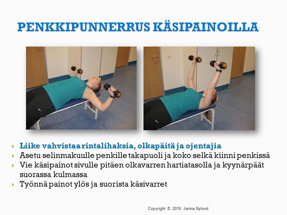 PENKKIPUNNERRUS KÄSIPAINOILLA