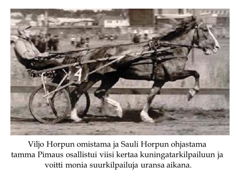Viljo Horpun omistama ja Sauli Horpun ohjastama