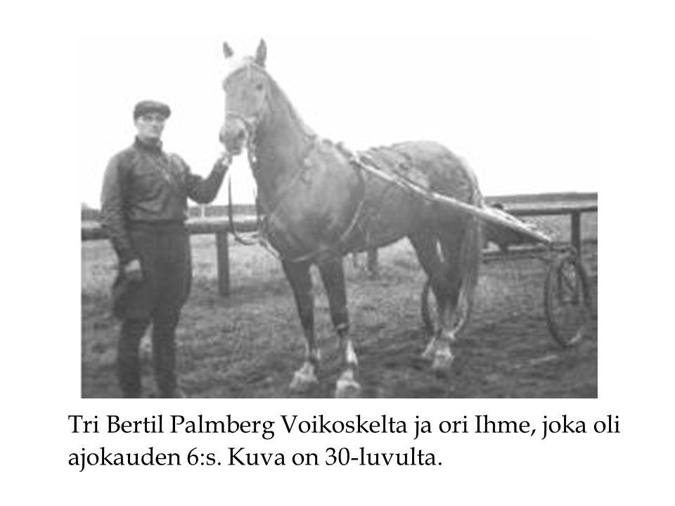 Tri Bertil Palmberg Voikoskelta ja ori Ihme, joka oli