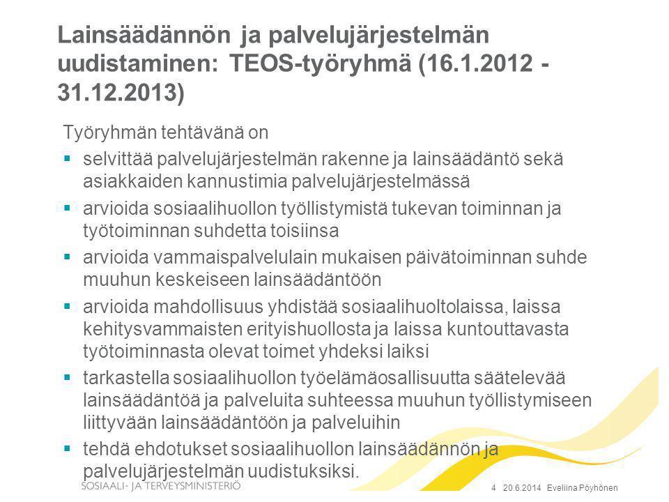Lainsäädännön ja palvelujärjestelmän uudistaminen: TEOS-työryhmä (16.1.2012 - 31.12.2013)