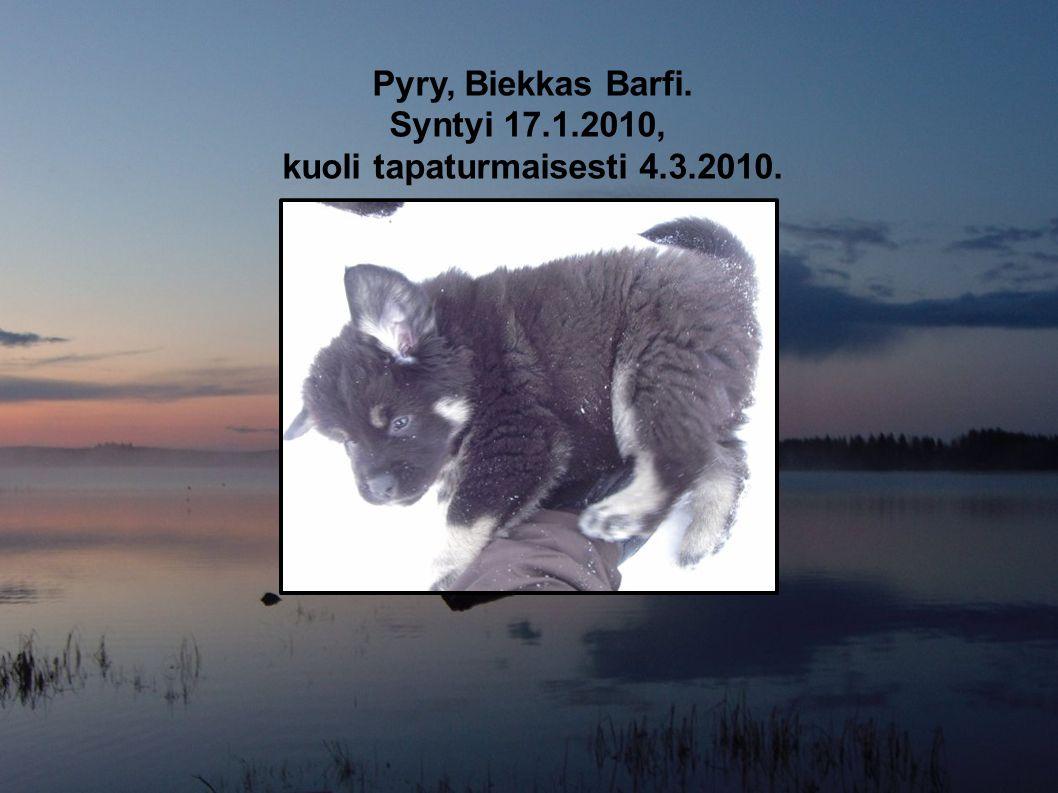 kuoli tapaturmaisesti 4.3.2010.
