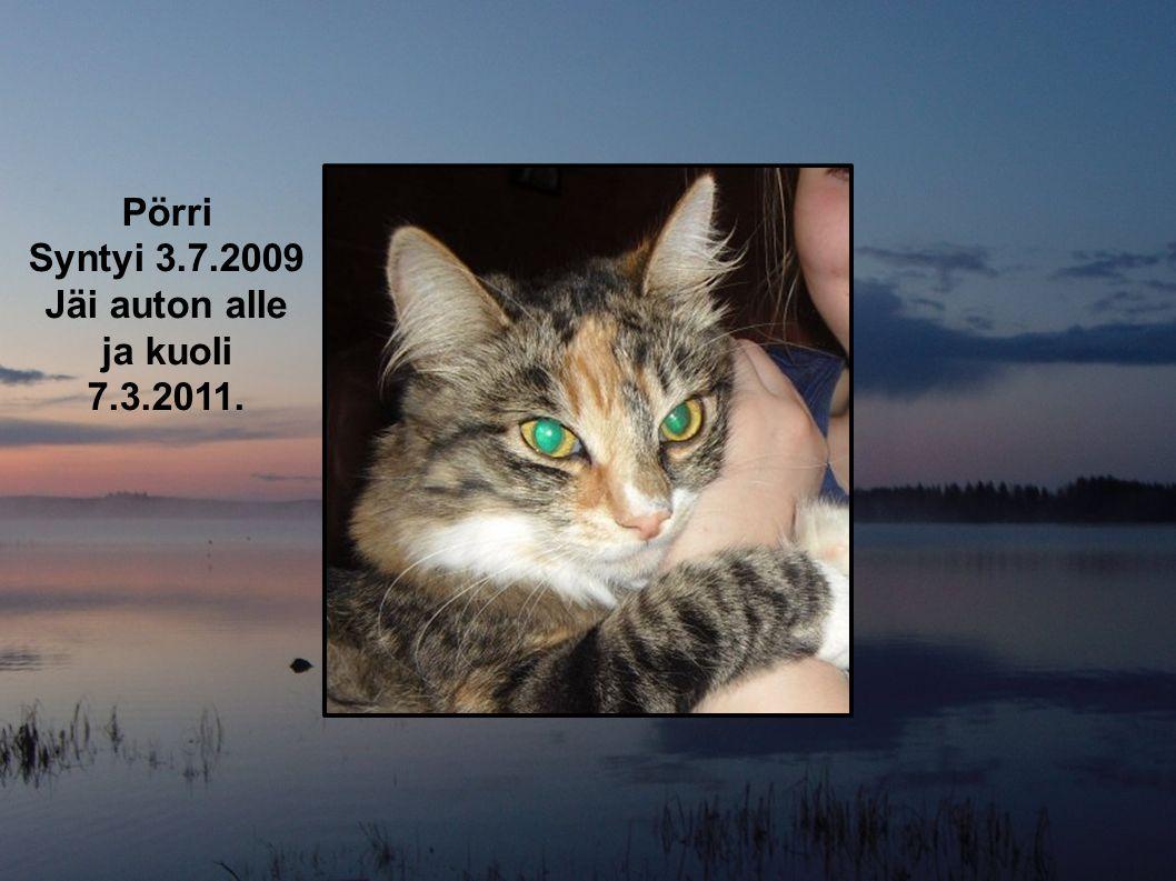 Pörri Syntyi 3.7.2009 Jäi auton alle ja kuoli 7.3.2011.