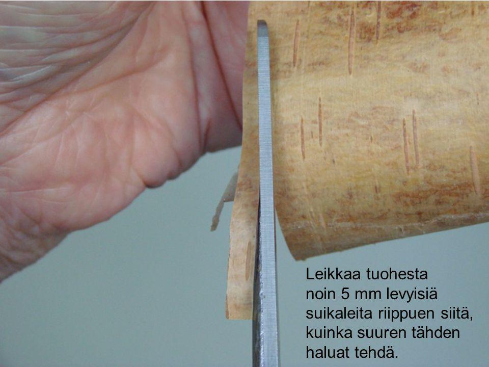 Leikkaa tuohesta noin 5 mm levyisiä suikaleita riippuen siitä, kuinka suuren tähden haluat tehdä.