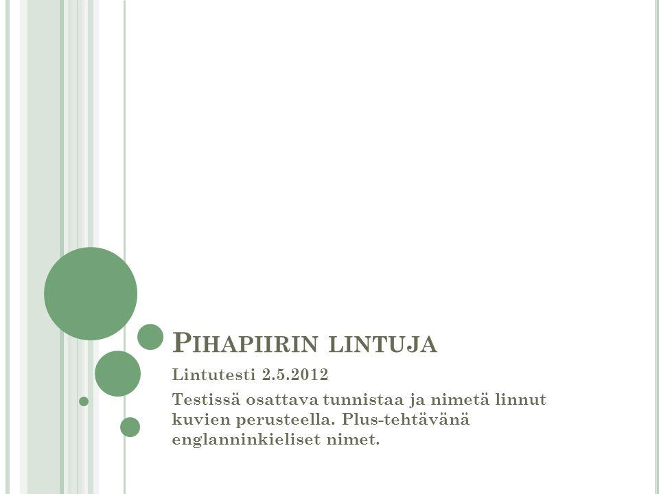 Pihapiirin lintuja Lintutesti 2.5.2012