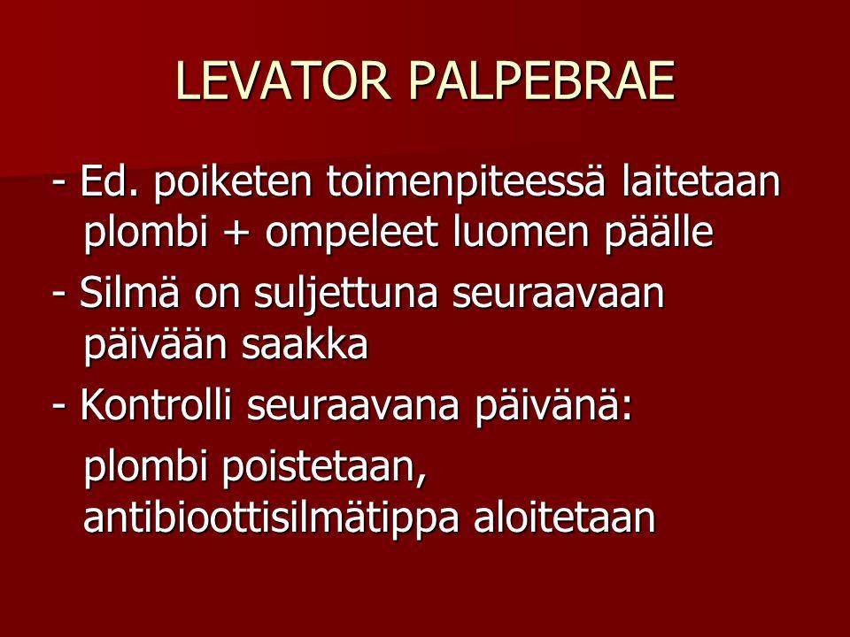LEVATOR PALPEBRAE - Ed. poiketen toimenpiteessä laitetaan plombi + ompeleet luomen päälle. - Silmä on suljettuna seuraavaan päivään saakka.