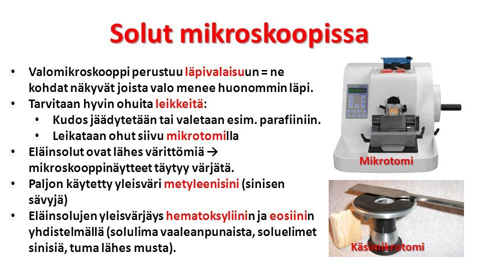 Solut mikroskoopissa Valomikroskooppi perustuu läpivalaisuun = ne kohdat näkyvät joista valo menee huonommin läpi.