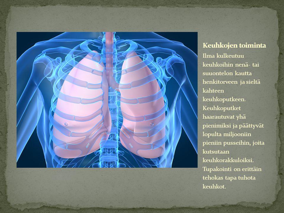 Keuhkojen toiminta