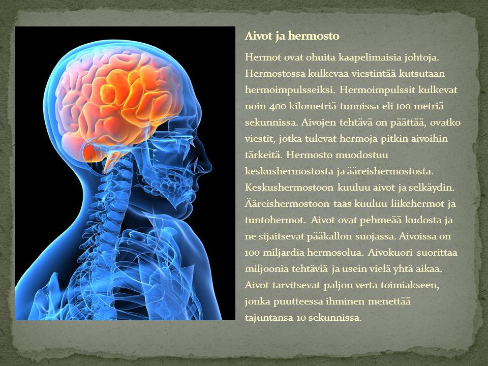 Aivot ja hermosto