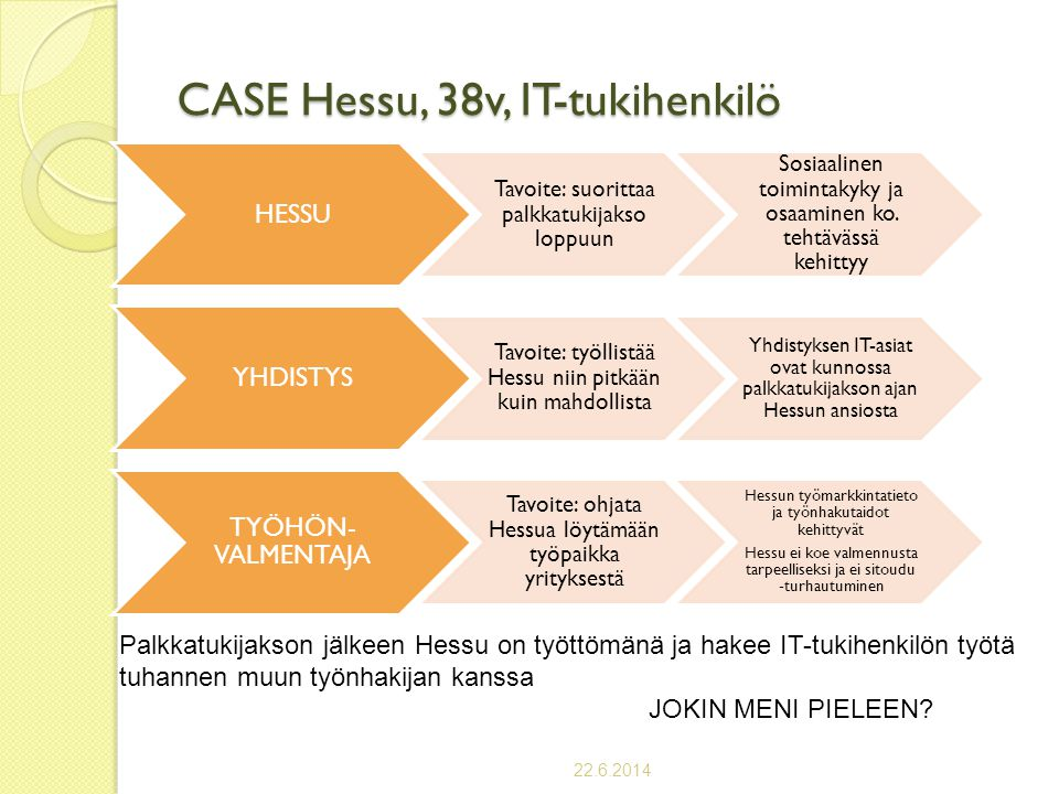 CASE Hessu, 38v, IT-tukihenkilö