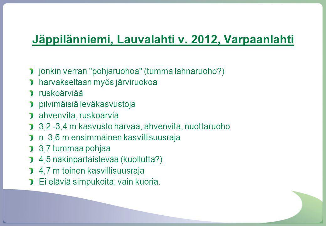 Jäppilänniemi, Lauvalahti v. 2012, Varpaanlahti