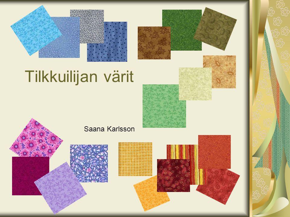 Tilkkuilijan värit Saana Karlsson