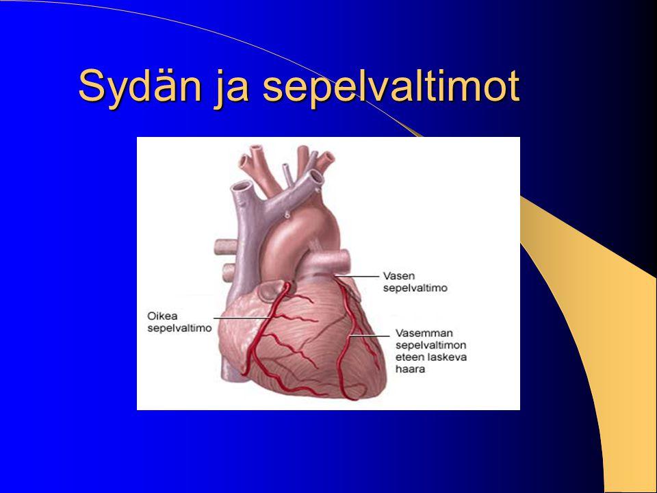 Sydän ja sepelvaltimot