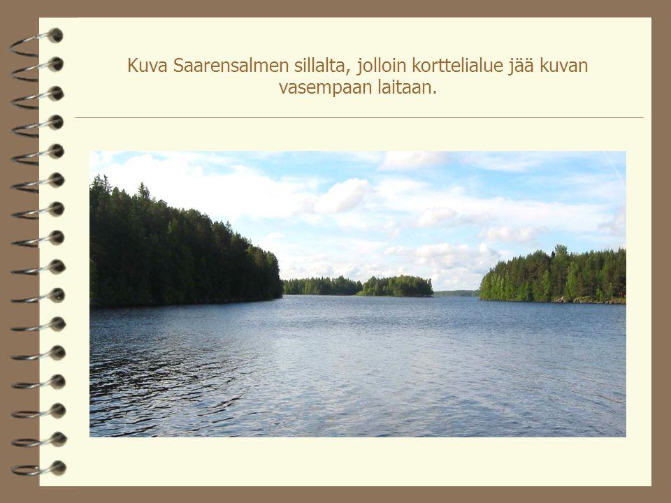 Kuva Saarensalmen sillalta, jolloin korttelialue jää kuvan vasempaan laitaan.