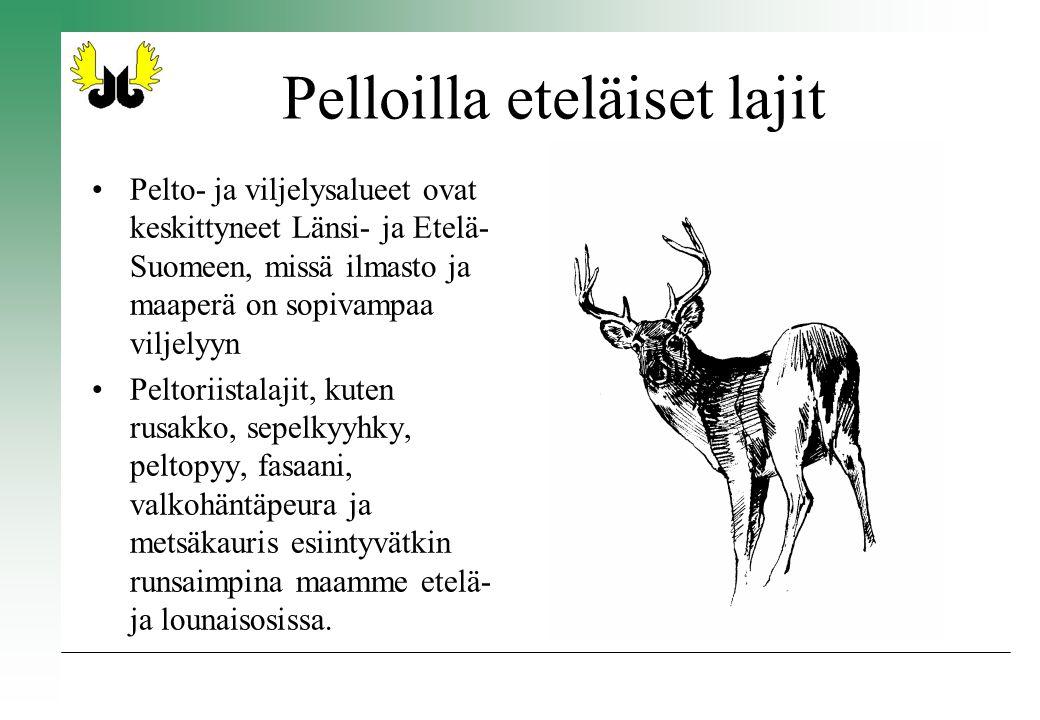 Pelloilla eteläiset lajit