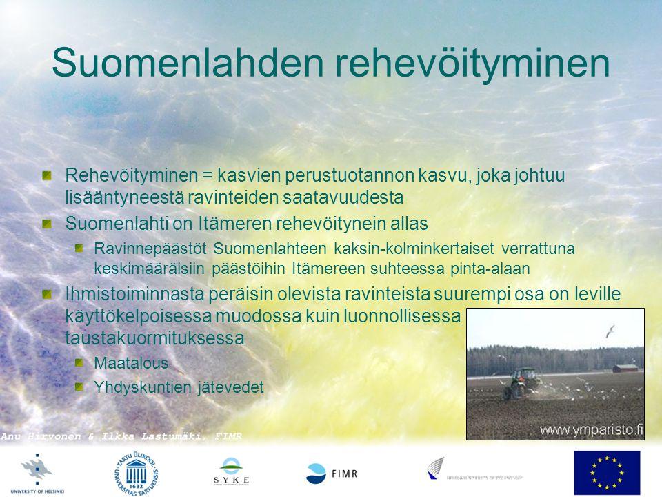 Suomenlahden rehevöityminen