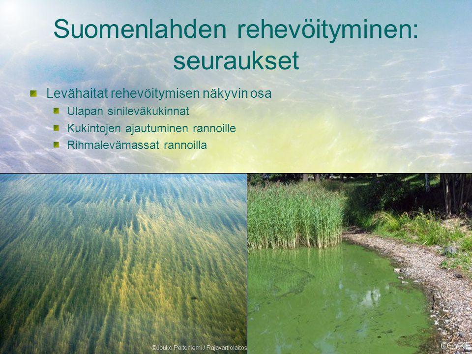 Suomenlahden rehevöityminen: seuraukset