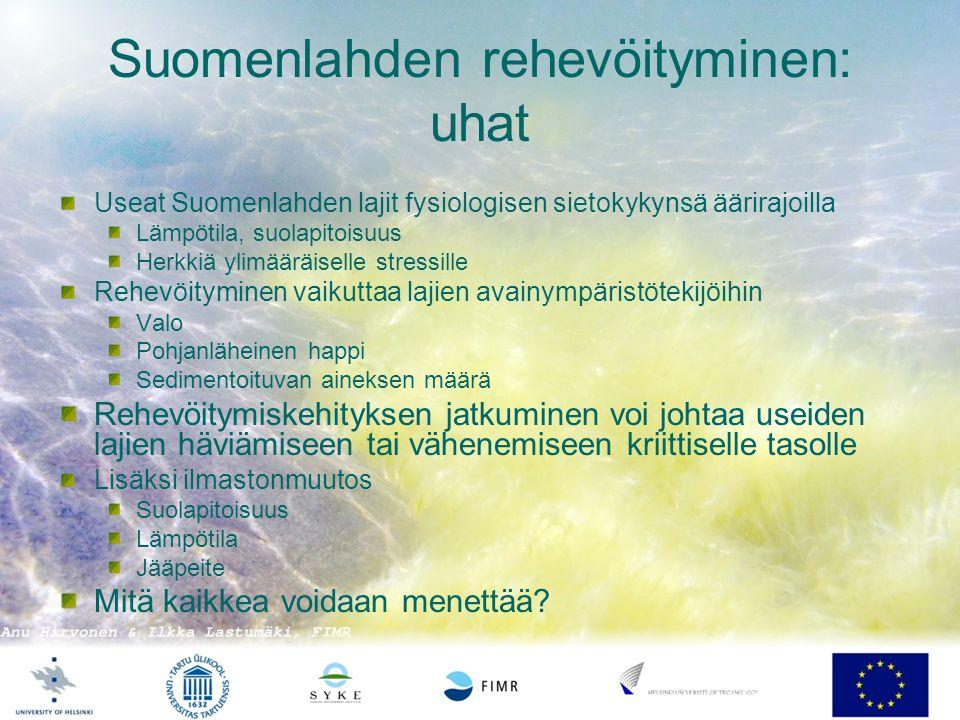 Suomenlahden rehevöityminen: uhat