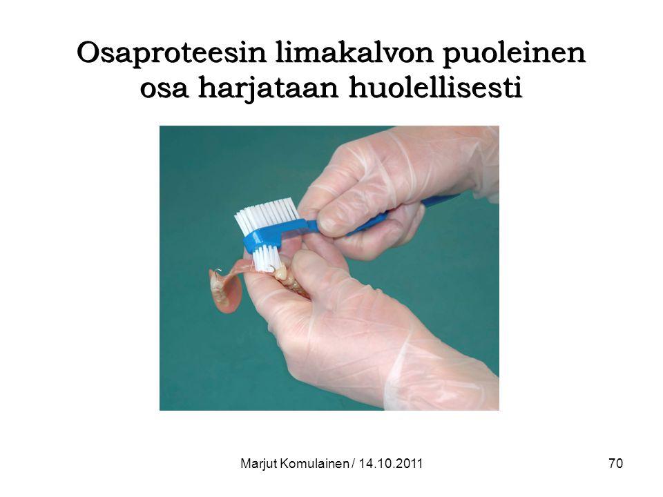 Osaproteesin limakalvon puoleinen osa harjataan huolellisesti