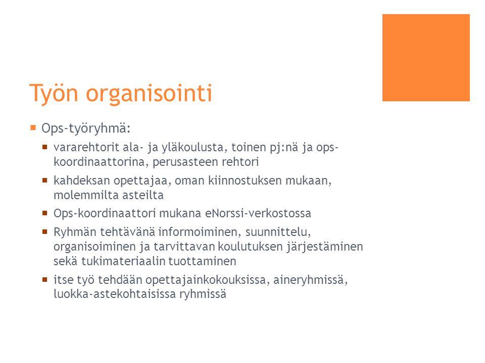 Työn organisointi Ops-työryhmä: