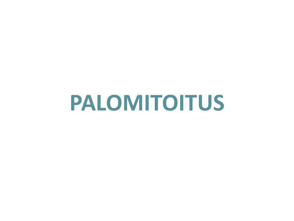 PALOMITOITUS