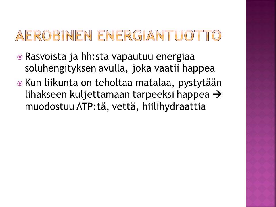 Aerobinen energiantuotto