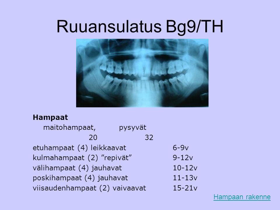 Ruuansulatus Bg9/TH Hampaat maitohampaat, pysyvät 20 32