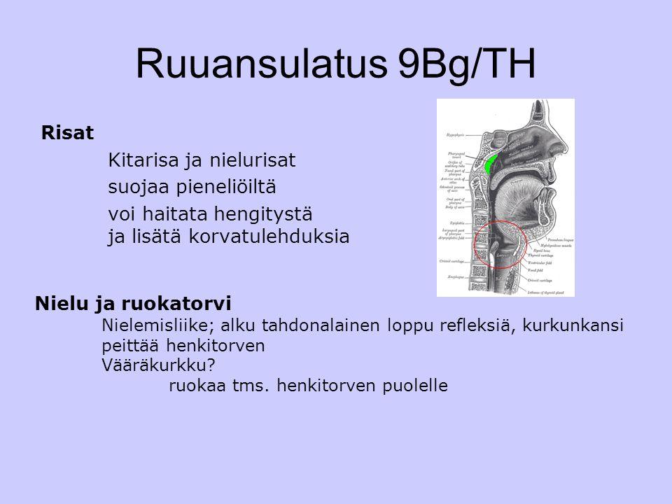Ruuansulatus 9Bg/TH Risat Kitarisa ja nielurisat suojaa pieneliöiltä