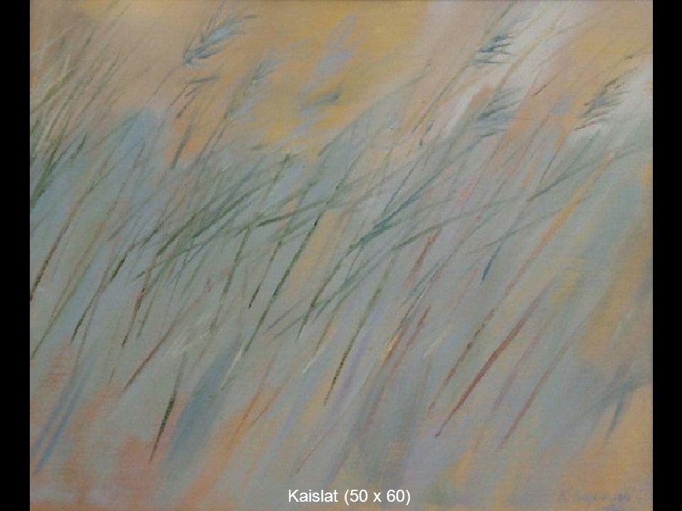 Kaislat (50 x 60)