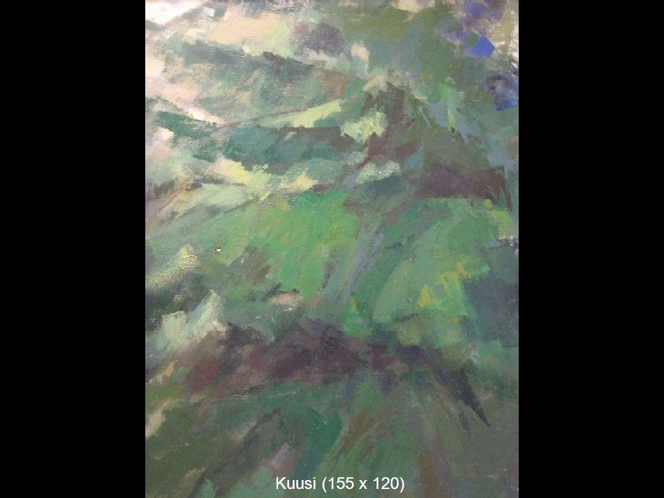 Kuusi (155 x 120)