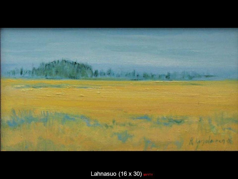 Lahnasuo (16 x 30) MYYTY