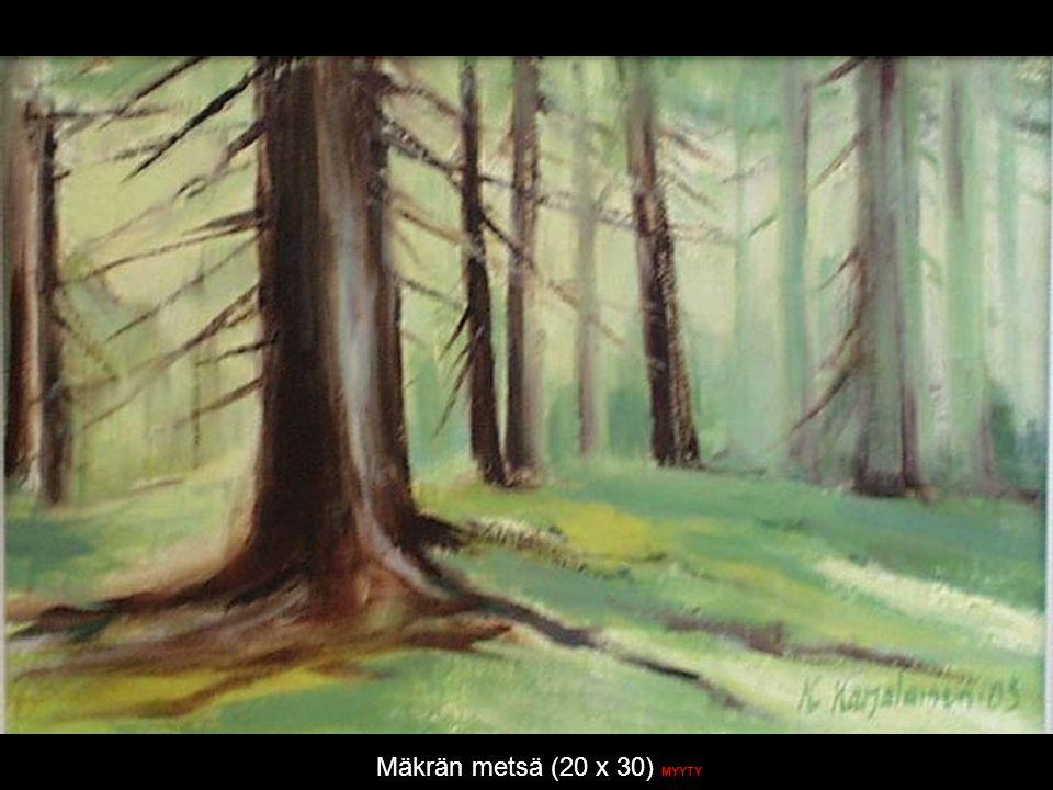 Mäkrän metsä (20 x 30) MYYTY