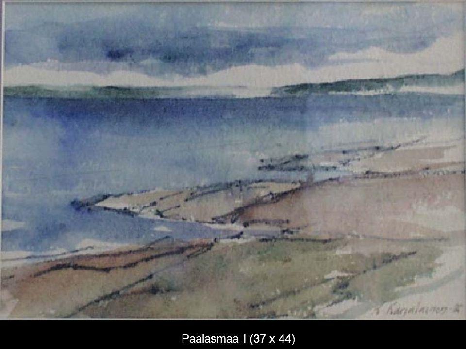 Paalasmaa I (37 x 44)