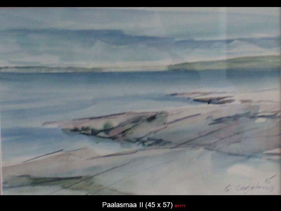 Paalasmaa II (45 x 57) MYYTY