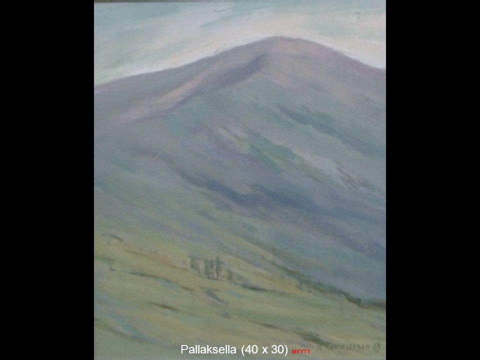 Pallaksella (40 x 30) MYYTY