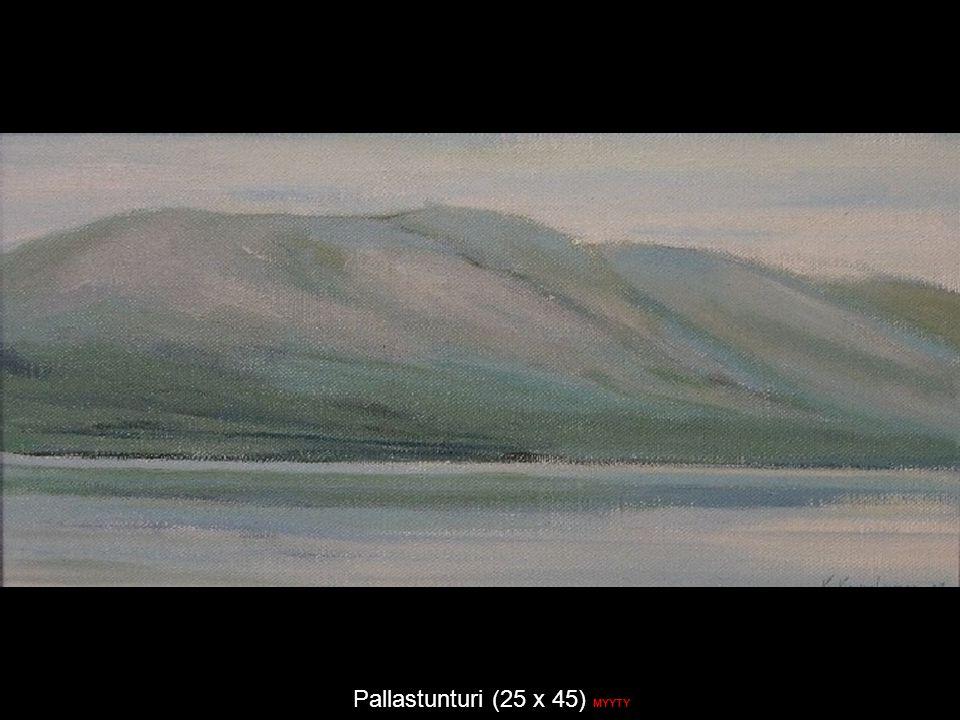 Pallastunturi (25 x 45) MYYTY